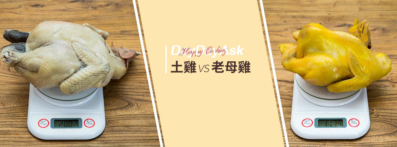 DayDayAsk: 土雞 vs 老母雞