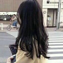 棕色淡毛520